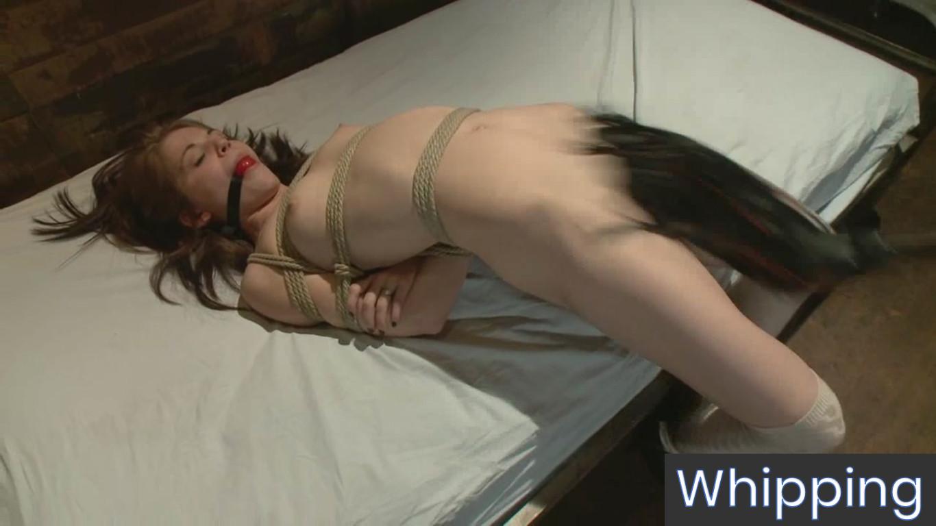 BDSM Teen Porn Master - Whipping